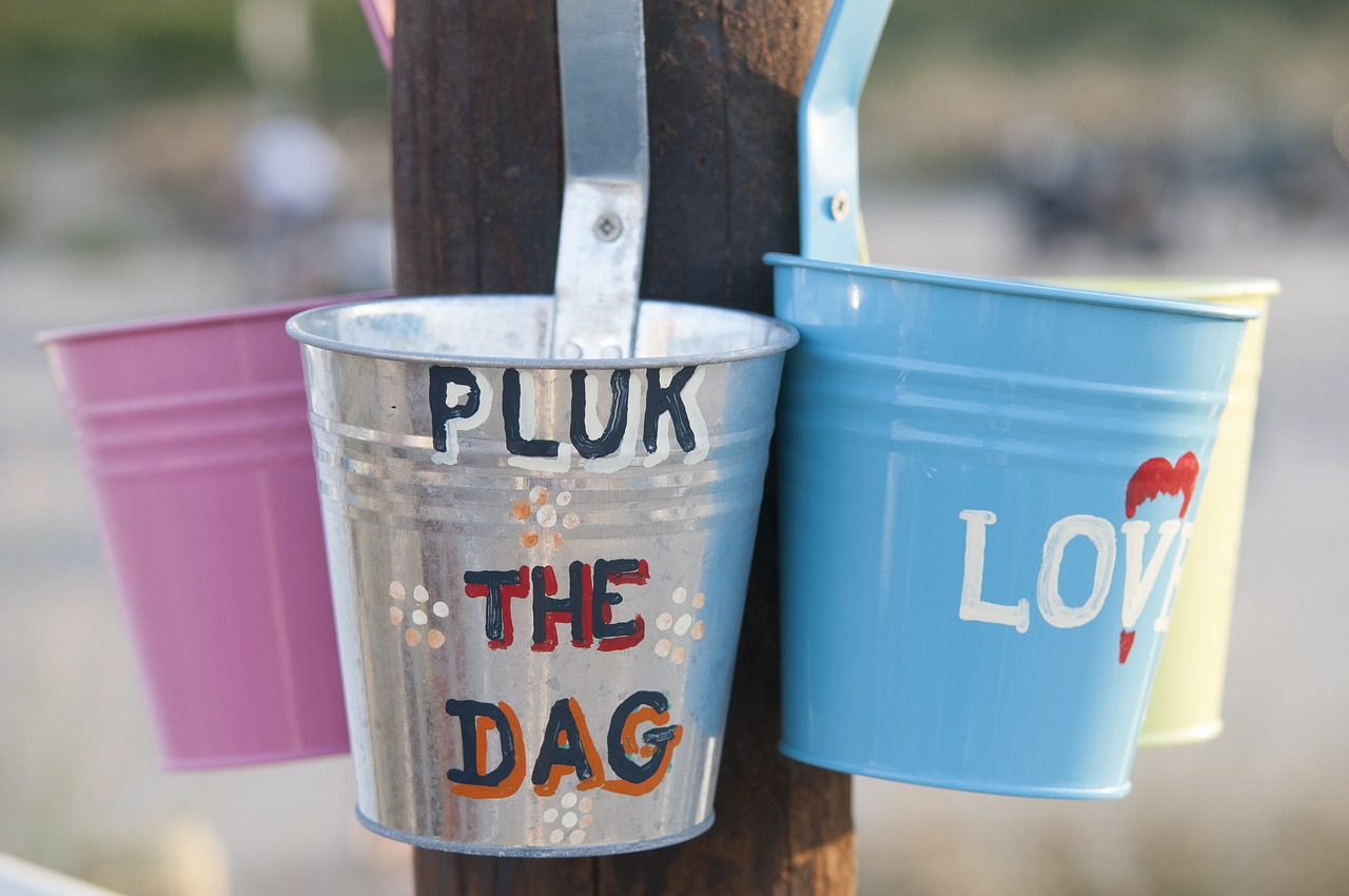 bucket quotes